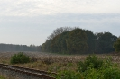 Eldingen_152