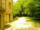 Schloss Eldingen_7