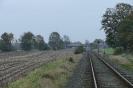 Eldingen_208